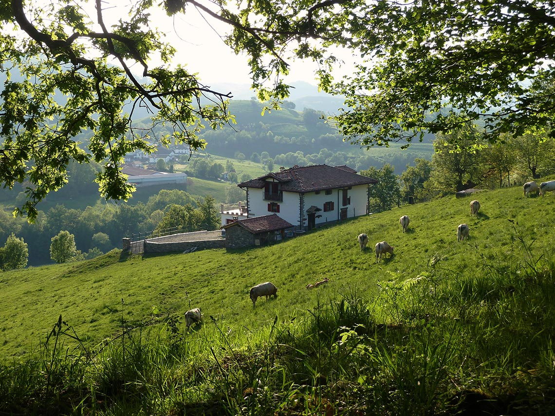 Casa rural en baztan gamiokoborda gamiokoborda casa rural baztan - Casa rural casavieja ...